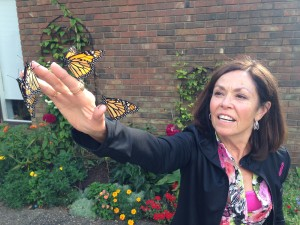 SHGC Member raised & released 85 Monarchs this summer!