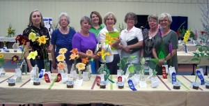 Judges at the Lexington Council Flower Show in July