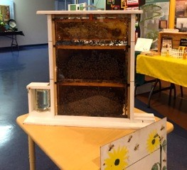 Educational Exhibit-Live Bees