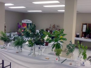 Horticulture Entries at the Franklin County Fair Flower Show