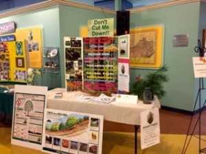 Educational Exhibit-Pollinators