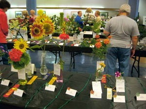 Horticulture Entries